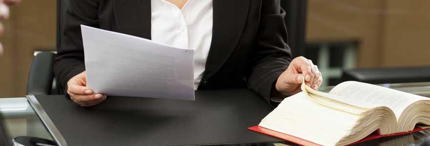 L'avocat de droit civil dans les litiges